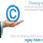 Dịch Vụ Đăng Ký Bảo Hộ Thương Hiệu Trọn Gói Tại Đà Nẵng
